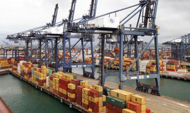 Exportación de mariscos desde Panamá